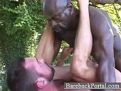 Huge black stud breeding white guy